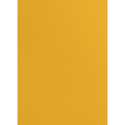 Roleta w kasecie ARTE Zwykła (wysokość 150 cm) - DECOR